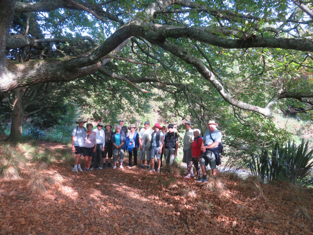 Rec group on Black Hill walkway